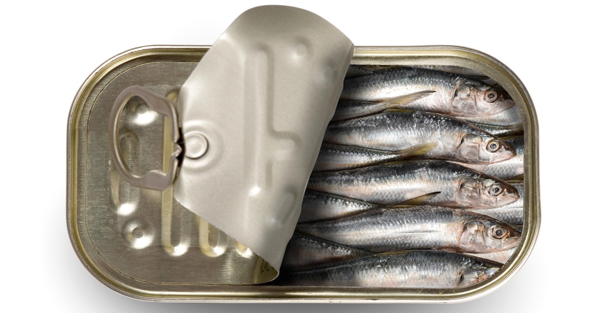 ikan kalengan, makanan berbahaya bagi balita